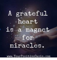 gratitudeLaurenIssattitude